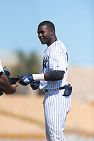 Glendale Desert Dogs left fielder Estevan Florial (13), of the New York Yankees organization, during an Arizona Fall League game against the Mesa Solar Sox at Camelback Ranch on October 15, 2018 in Glendale, Arizona. Mesa defeated Glendale 8-0. (Zachary Lucy/Four Seam Images)