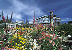 Looking at Mendocino home behind beautiful Gardens, Mendocino, California
