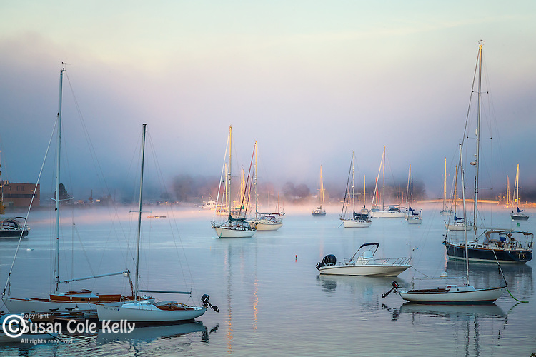 Autumn fog at Kittery Point in Kittery, Maine, USA