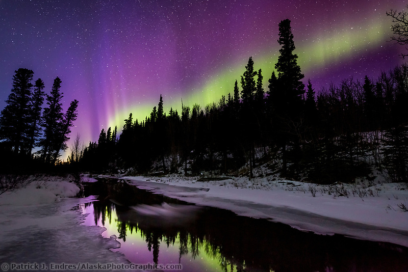 Purple northern lights reflect in a stream in the Alaska Range mountains, Interior, Alaska.