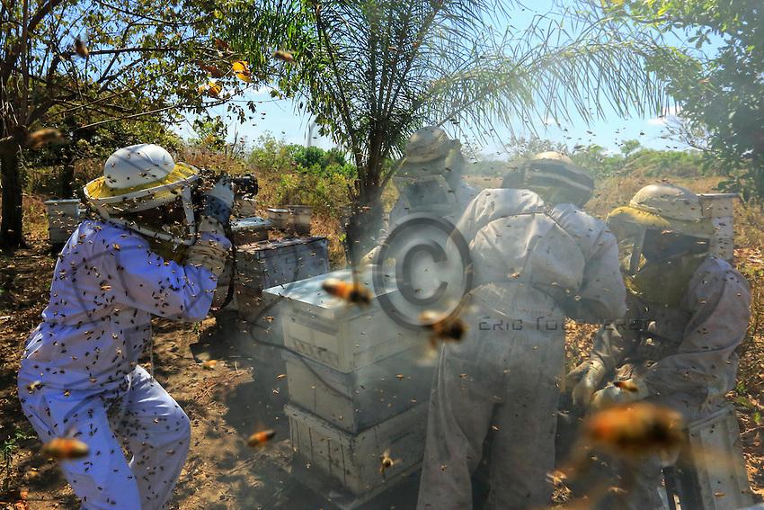 Eric Tourneret, hard at work, tries to limit the number of bees in front of his lens. ///Eric Tourneret en plein travail essaye de limiter le nombre d'abeilles devant son objectif.