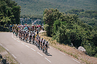 the peloton led by Team SKY crossing the impressive the Ard&ecirc;che region with it's deep canyons<br /> <br /> Stage 14: Saint-Paul-Trois-Ch&acirc;teaux &gt; Mende (187km)<br /> <br /> 105th Tour de France 2018<br /> &copy;kramon