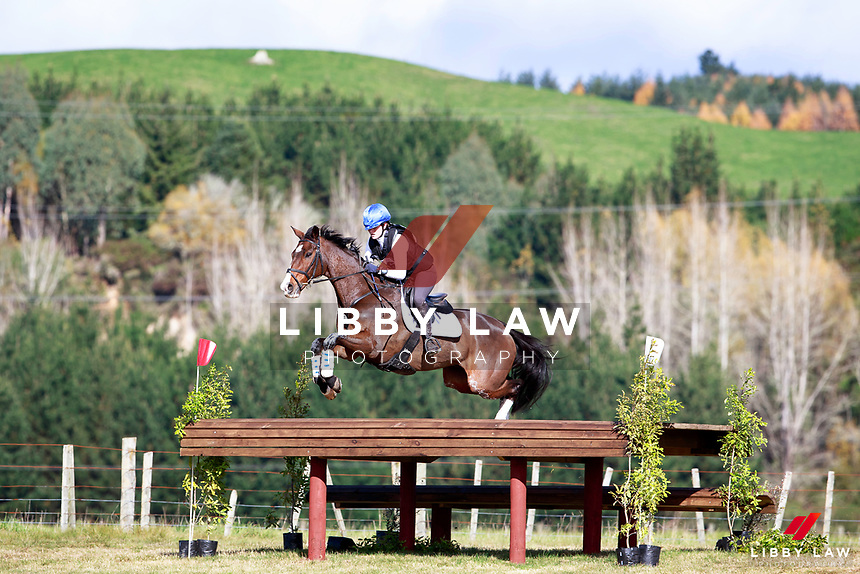 Danielle Wheeler rides One Cool Dude during the Bates NZ CCI2* Championship Cross Country at the 2017 NZL-NRM National Three Day Event Championships. National Equestrian Center, Taupo. Saturday 13 May. Copyright Photo: Libby Law Photography