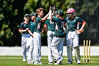 Raroa celebrates a wicket during the National Primary School Cup Final between Raroa Normal Intermediate School v Kings Prep at the Bert Sutcliffe Oval, Lincoln University, Christchurch, New Zealand. Wednesday 22 November 2017. Photo: John Davidson/www.bwmedia.co.nz