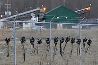 Black ribbon wreaths are tied Sunday, Jan. 8, 2006, to the fence at the Sago mine near Buckhannon, WV, where 12  miners were killed in an explosion. (Gary Gardiner/EyePush Newsphotos)<br />