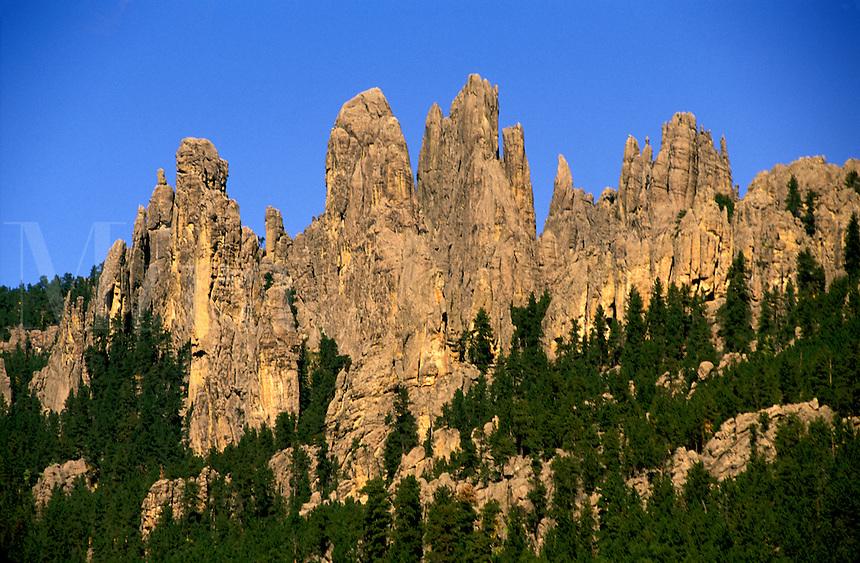 Granite pinnacles along Needles Scenic Highway Custer State Park South Dakota.