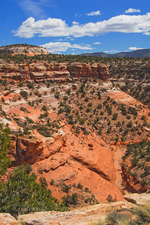 colorado, canyon of the ancients, the liberated photographer