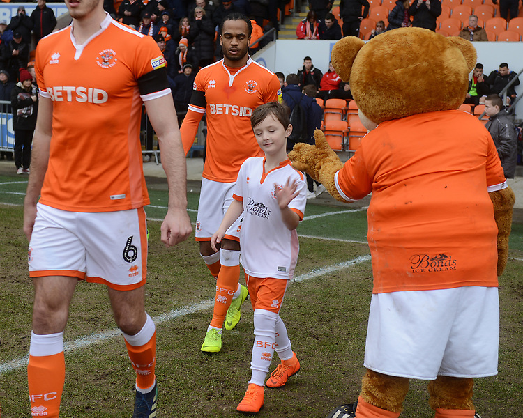 A mascot high fives Bloomfield Bear<br /> <br /> Photographer Kevin Barnes/CameraSport<br /> <br /> The EFL Sky Bet League One - Blackpool v Walsall - Saturday 9th February 2019 - Bloomfield Road - Blackpool<br /> <br /> World Copyright &copy; 2019 CameraSport. All rights reserved. 43 Linden Ave. Countesthorpe. Leicester. England. LE8 5PG - Tel: +44 (0) 116 277 4147 - admin@camerasport.com - www.camerasport.com