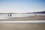 Tourists at the Pacific Rim National Park Reserve, Long Beach walking along the sandy beach of Pacific ocean. Tofino, Vancouver Island, BC, Canada Image © MaximImages, License at https://www.maximimages.com