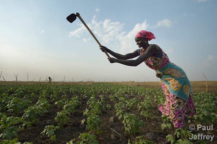 Women work together in a community vegetable garden on April 12, 2017, in Dong Boma, a Dinka village in South Sudan's Jonglei State. Most of the women's families recently returned home after being displaced by rebel soldiers in December, 2013, and they face serious challenges in rebuilding their village while simultaneously coping with a drought which has devastated their cattle herds.<br /> <br /> The Lutheran World Federation, a member of the ACT Alliance, is helping villagers restart their lives with support for housing, livelihood, and food security.