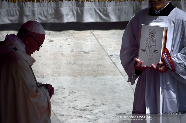 Pope Francis leads a Mass for the canonization of Blessed Maria Elisabeth Hesselblad and Stanislaus of Jesus and Mary in the Vatican on June 5, 2016.