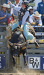 Shane Gordon, from Fort Jones, CA., , tries to hang onto Slam Dunk during the Xtreme Bull Riding Competition at the Kitsap County Fair and Stampede  held Aug. 26 to Aug. 30, 2009 in Silverdale, WA. Jim Bryant Photo. All Right Reserved. © 2009