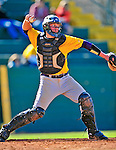 19 April 2009: University at Albany Great Danes' catcher Ralph Keppler, a Freshman from Rockville Centre, NY, in action against the University of Vermont Catamounts at Historic Centennial Field in Burlington, Vermont. The Great Danes defeated the Catamounts 9-4 in the second game of a double-header. Sadly, the Catamounts are playing their last season of baseball, as the program has been marked for elimination due to budgetary constraints on the University. Mandatory Photo Credit: Ed Wolfstein Photo