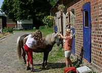 Shetland-Pony, Shetlandpony, Shetland - Pony, Shetty, Shetti, Ponyhof, Mädchen, Kinder striegeln und putzen, Reiten