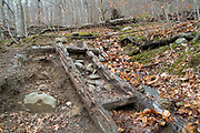 A decaying wooden trail ladder along the Kedron Flume Trail in Hart's Location of the New Hampshire White Mountains.