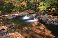 Autumn leaves trapped in a small whirlpool below a cascade in the Ossipee Mountains