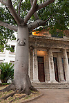 Havana, Cuba; a large Ceiba tree shades the small temple, El Templete, which sits on the site of the first town council meeting of Havana in 1519
