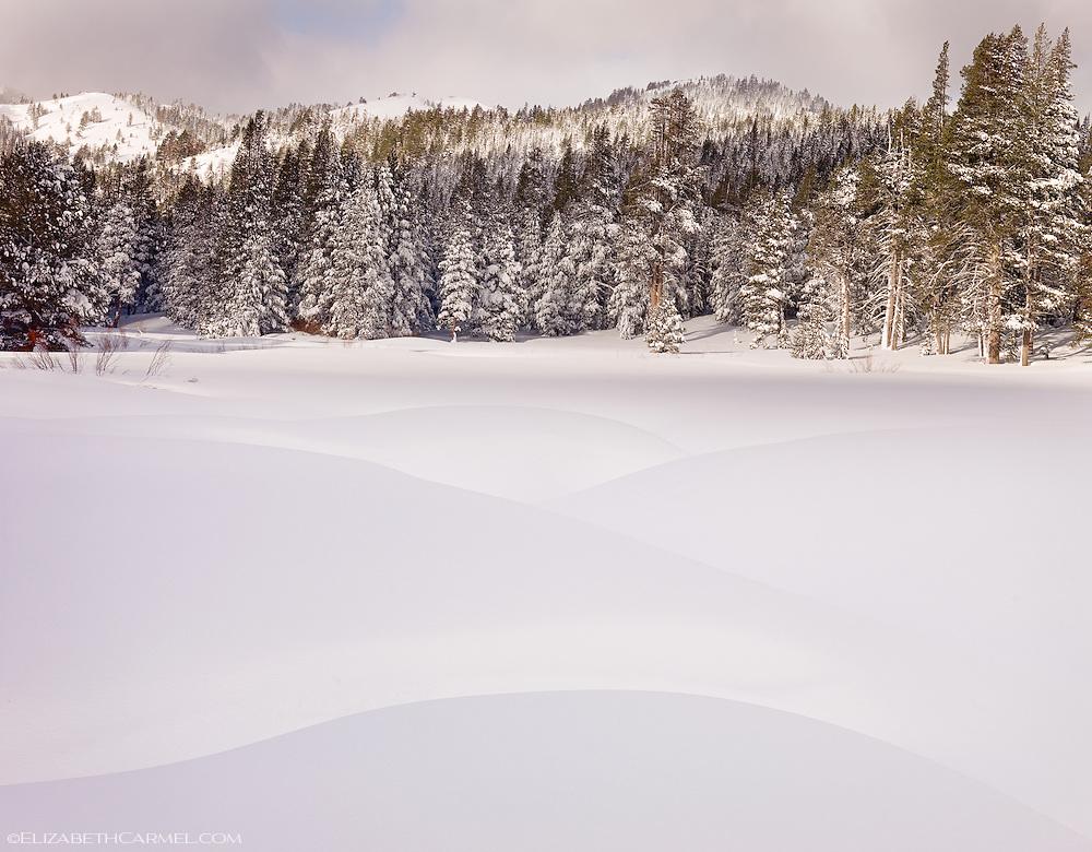 Snow Dunes