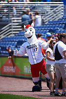 The Binghamton Rumble Ponies mascot during a game against the Hartford Yard Goats on July 9, 2017 at NYSEG Stadium in Binghamton, New York.  Hartford defeated Binghamton 7-3.  (Mike Janes/Four Seam Images)