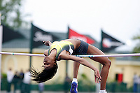 Chaunte Howard cleared 1.95m at the Walt Disney World Invitational on Saturday, March 24, 2008. Photo by Errol Anderson, The Sporting Image.