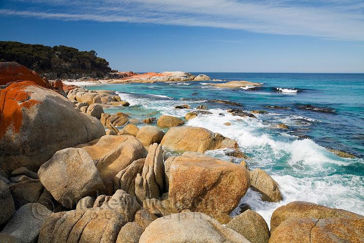 Rugged coastline of the Bay of Fires.  St Helens, Tasmania, AUSTRALIA