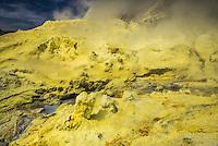 Yellow Sulphur at White Island Volcano, an active volcano in the Bay of Plenty, North Island, New Zealand