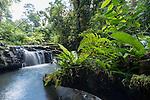 Small waterfall along the Nandroya walking track