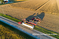 63801-12503 Unloading corn into truck during harvest-aerial  Marion Co. IL