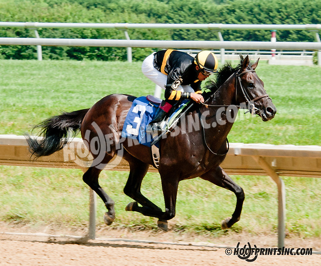 Jimmy's At Local winning at Delaware Park on 7/15/13