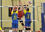 2015-10-24 / volleybal / seizoen 2015-2016 / Geel - Elen / Van Es (m) (Geel) slaat voorbij het blok van Royakkers (nr 12) (Elen) en Medo (nr 2) (Elen)
