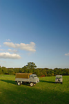 Historic 1950/60s Landrovers of the Dunsfold Collection on a field with horses in Surrey, south England. Left: Land Rover Series 2b 110 Forward Control Diesel; right: Land Rover Series 1 88 in Station Wagon. Europe, UK, England, Surrey, Dunsfold. --- RIGHTS PROTECTION AVAILABLE ON REQUEST. Automotive trademarks are the property of the trademark holder, authorization may be needed for some uses.