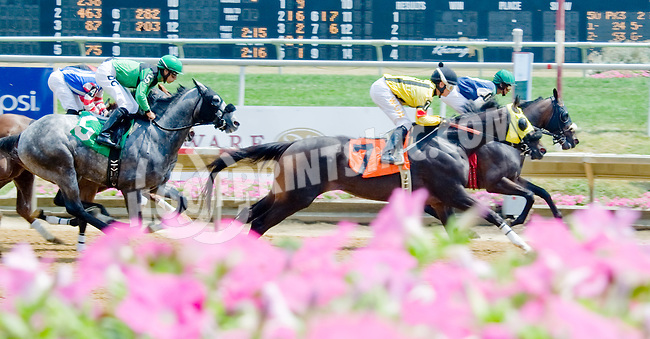 Crimson Pride winning at Delaware Park on 7/14512