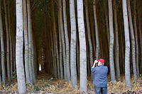 Photographer taking picture of Pacific Albus trees. Morrow County, Oregopn.
