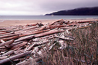 Haida Gwaii (Queen Charlotte Islands), BC, British Columbia, Canada - Coastline at Woodruff Bay, Gwaii Haanas National Park Reserve