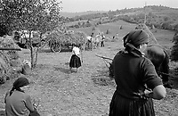 ROMANIA / Maramures / Poienile Izei / September 2002..In a scene reminiscent of a Bruegel painting, peasants harvest hay at the end of the summer...© Davin Ellicson / Anzenberger..