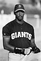 Dante Powell of the San Jose Giants during a 1995 season game at Fiscalini Field in San Bernardino,California.(Larry Goren/Four Seam Images)