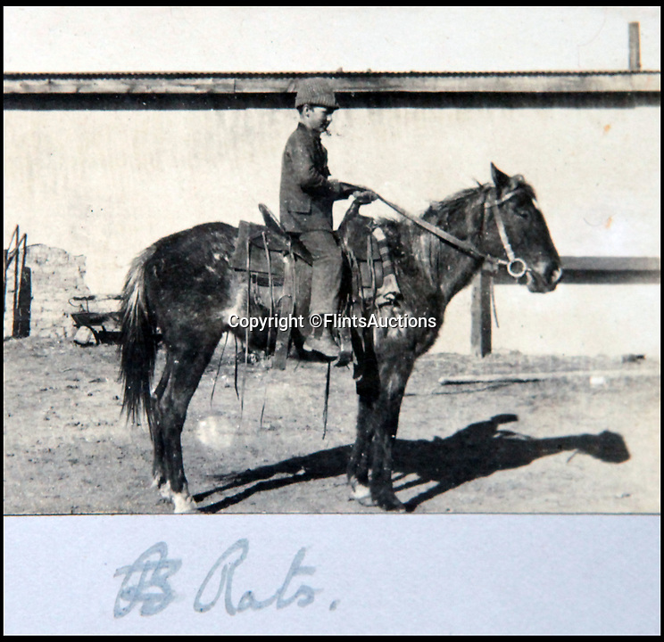BNPS.co.uk (01202 558833)<br /> Pic: FlintsAuctions/BNPS<br /> <br /> Young cowboy 'Rats' on his bedraggled horse.<br /> <br /> Unseen album reveals the life of a cowboy in the real wild west...<br /> <br /> Fascinating previously unseen early photos of cowboys in the Wild West have come to light 130 years later.<br /> <br /> They show life on the ranches of Colorado and New Mexico in the vast expanses of the south west US in the 1880s.<br /> <br /> One dramatic image captures the thrilling moment a group of cowboys ride towards the camera with hats held aloft.<br /> <br /> The photos are thought to have been taken by a British farmhand who travelled Stateside in the late 19th century to earn a living.