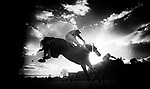 ESHER, ENGLAND - DECEMBER 03: Betfair Tingle Creek Chase Day The Mezzzanine hurdle Race at Sandown Park on December 3, 2016 in Esher, England. (Photo by Leo mason Split Second/Corbis via Getty Images)