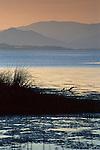 Sunset light over Clear Lake, Lakeside County Park, near Kelseyville, Lake County, California