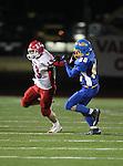 2010.11.13 - Hornell vs Alden (NYSPHSAA B Quarterfinals)