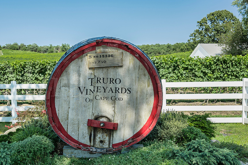 Truro Vineyards, Cape Cod, Massachusetts, USA