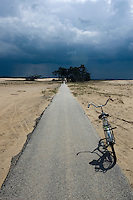 Storm clouds coming on the sky in Hoge Veluwe National Park, The Netherlands
