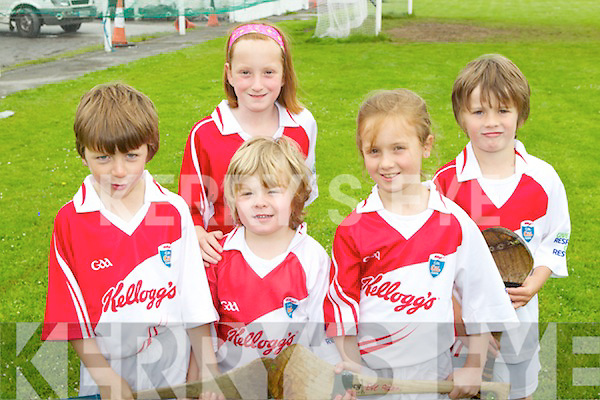 Pictured at the Ballyheigue Hurling Cúl Camp on Friday, from left: Luke O'Herlihy, Will O'Sullivan, Jessica Kenny, Melanie Dineen-Higgins and Phelim O'Sullivan..