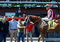 Hersh (no. 4) wns Race 6, Aug. 4, 2018 at the Saratoga Race Course, Saratoga Springs, NY.  Ridden by Joel Rosario and trained by Dermot Magner, Hersh finished 1 1/2 lengths in front of Business Cycle (no. 5).  (Photo credit: Bruce Dudek/Eclipse Sportswire)