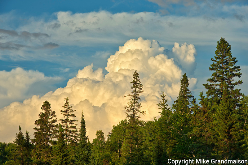 Storm clouds and boreal forest<br />Sioux Narrows<br />Ontario<br />Canada