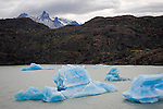Blue Icebergs in Lago Grey in Torres del Paine National Park in Patagonia Chile