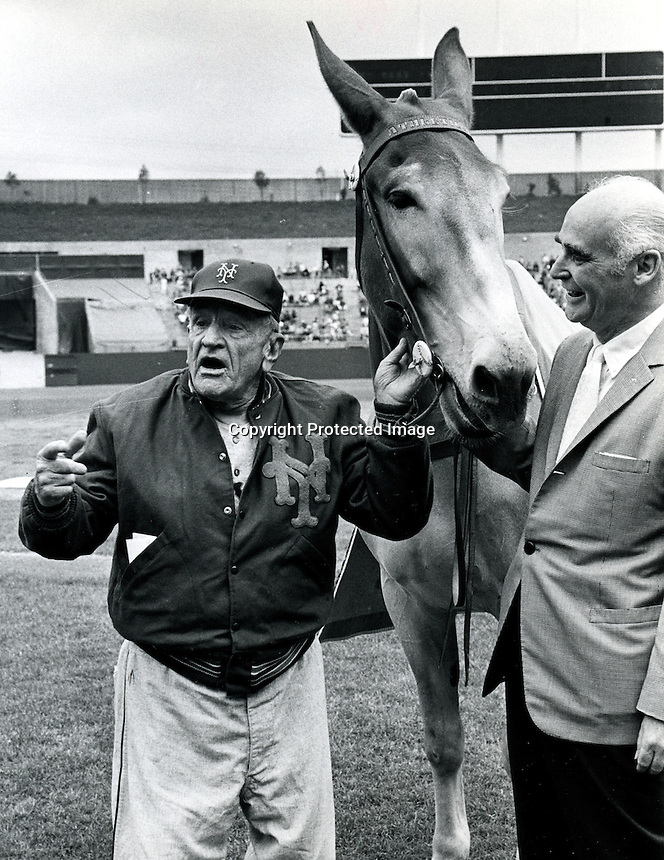 """N.Y.Mets manager Casey Stengel with the mule """"Charlie O"""" and A's owner Charles O. Finley..copyright Ron Riesterer"""