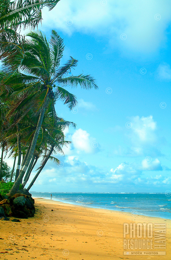 A solitary person enjoys a secluded beach on O'ahu's North Shore.