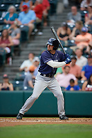 Binghamton Rumble Ponies Dario Pizzano (9) at bat during an Eastern League game against the Richmond Flying Squirrels on May 29, 2019 at The Diamond in Richmond, Virginia.  Binghamton defeated Richmond 9-5 in ten innings.  (Mike Janes/Four Seam Images)