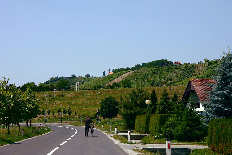 Biking to town.Croatian countryside